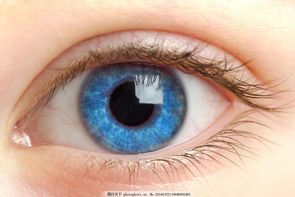 蓝色眼睛图片素材 近视眼 眉毛 眼睛 瞳孔 睫毛 美女眼睛 人体器官