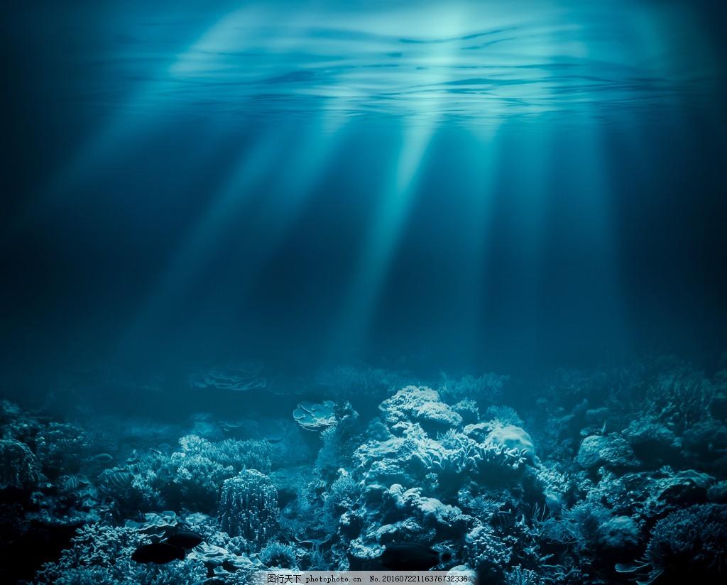 设计图库 高清素材 自然风景  唯美的海底美景高清图片下载 海底 珊瑚