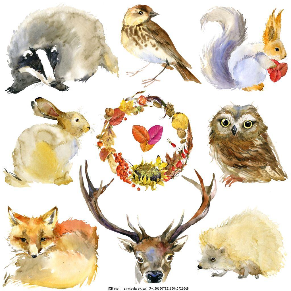 动物水彩画高清图