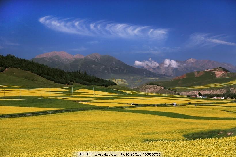 青海祁连山风景