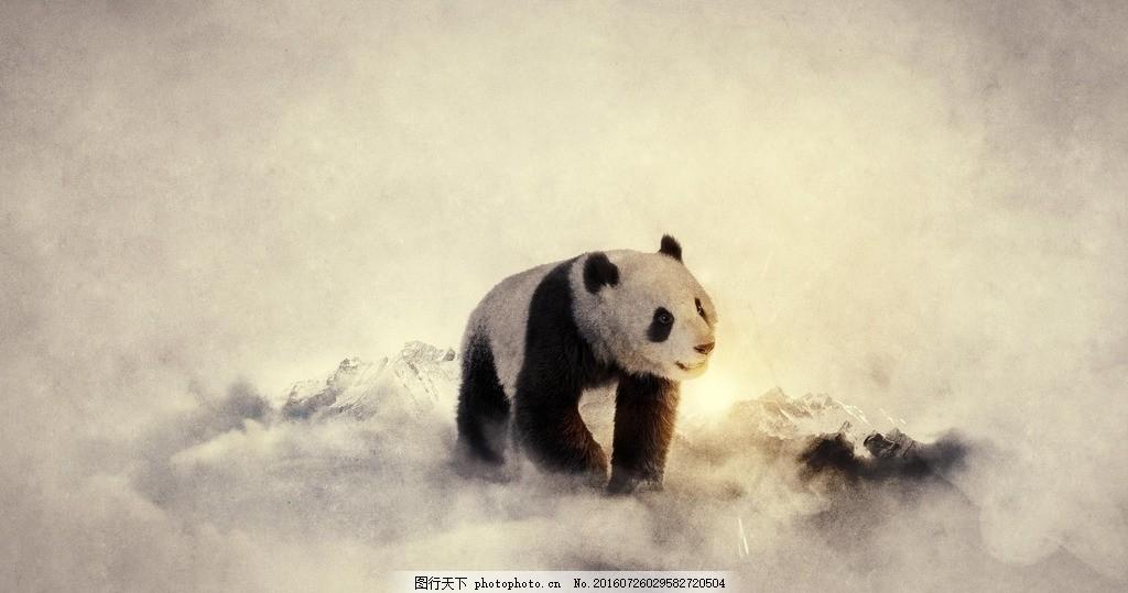 熊猫 可爱 动物 水墨 山脉 文理 背景 插画 设计 广告设计 广告设计