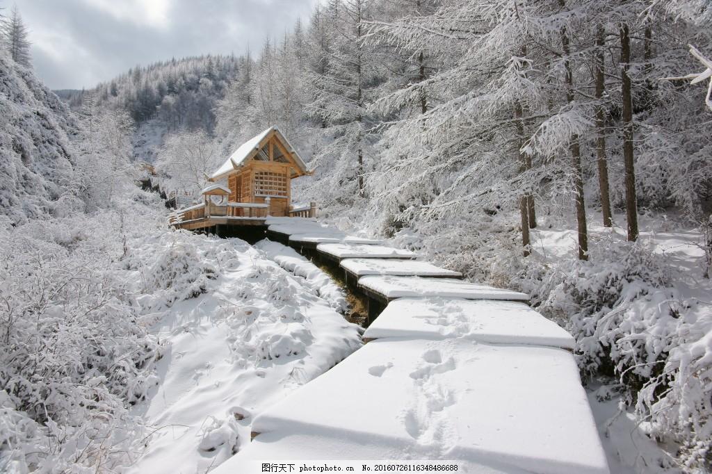 雪径 冬季 冬天 雪景 风景 风光