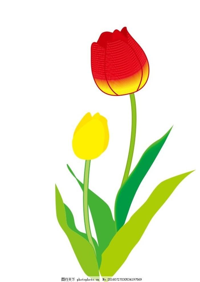 郁金香 红花绿叶 盆栽 植物 花卉 花朵 草木 艺术插画 插画 装饰画 简