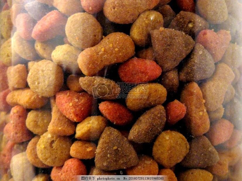 玻璃罐里的宠物粮食 料理 营养 健康 食品 红色