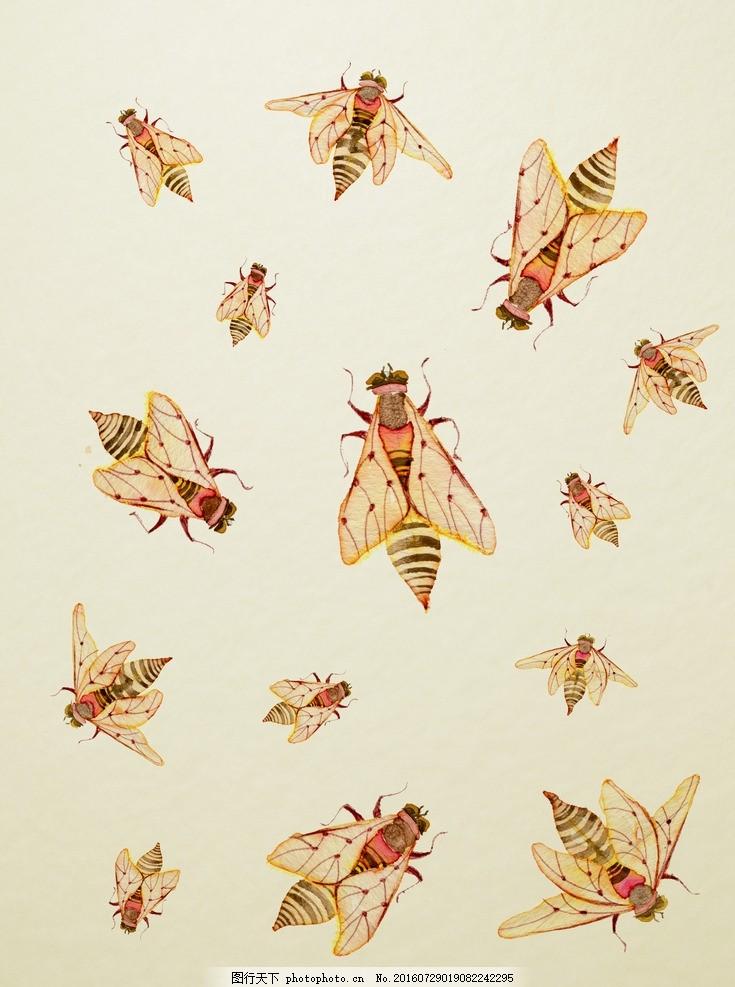 水彩昆虫 水彩画 小清新 花虫画 虫鸟花 虫鸟画 花鸟画 画鸟 画小动物