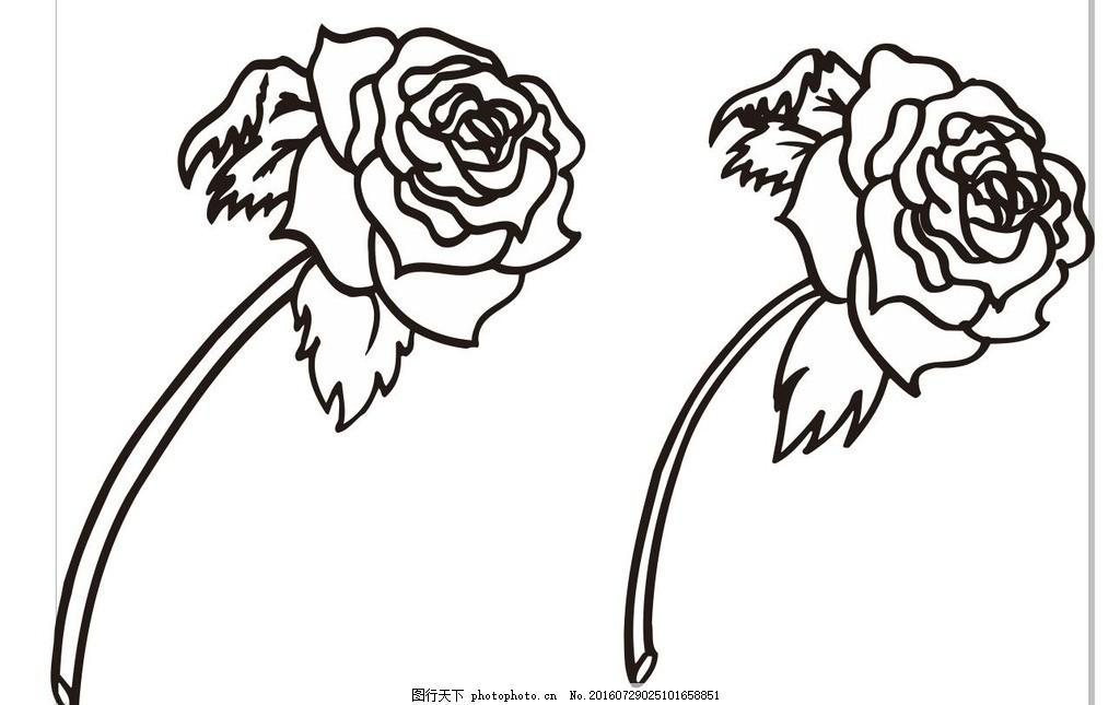 玫瑰花线描