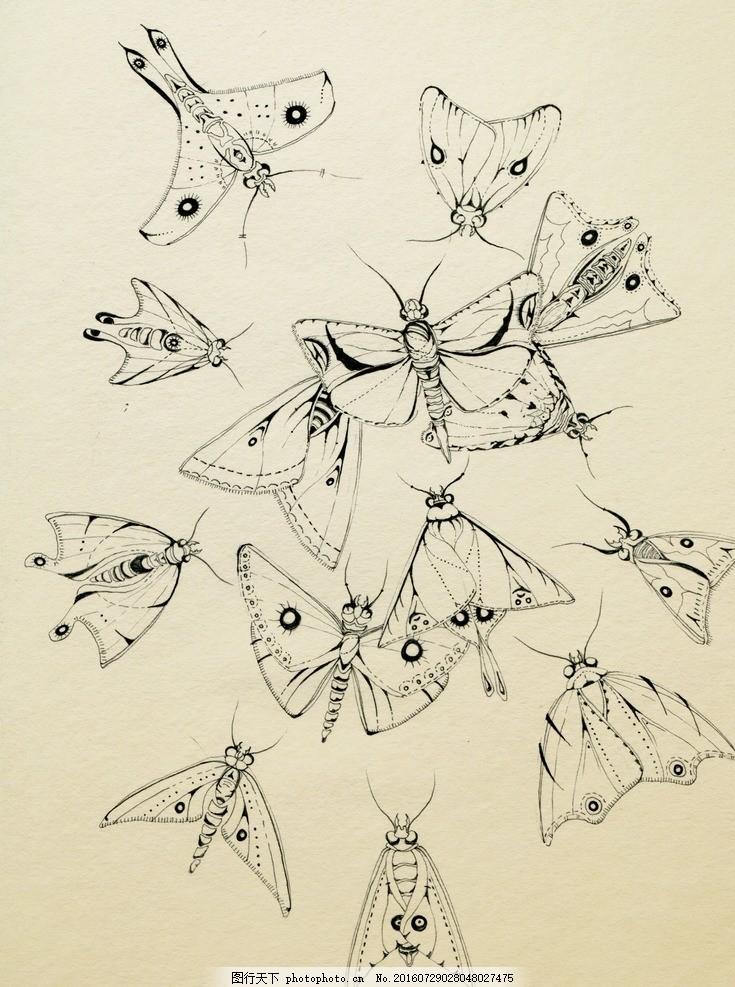 昆虫植物手绘线稿