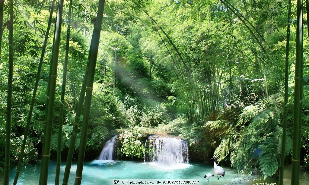 绿色竹林风景 绿色竹林风景高清图片下载 竹子 绿竹 竹叶 叶子