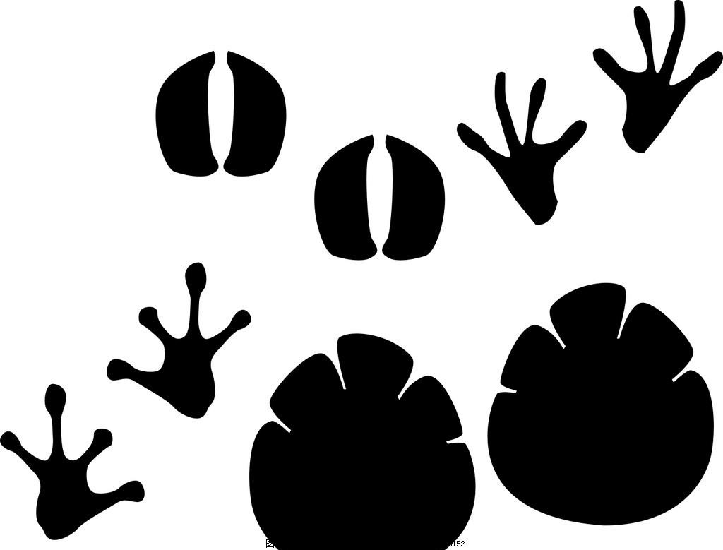 家禽脚印 动物脚印 矢量脚印 矢量动物脚印 脚印 水墨脚印 矢量 手绘 动物脚印素材 狗脚印 熊脚印 野兽脚印 笔刷 动物脚印笔刷 爪子 印记 动物脚印 矢量素材 剪影 图标 标签 卡通 插画 动物足迹 足迹 小动物脚印 脚印矢量图 动物脚印剪影 动物 脚印笔刷 脚印大全 兽印 设计 广告设计 广告设计 CDR