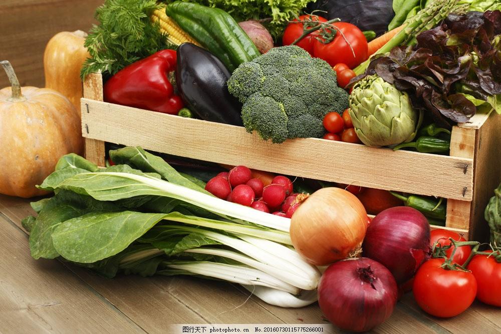 许多蔬菜和水果图片素材 西红柿 番茄 青菜 南瓜 新鲜蔬菜 果实 水果