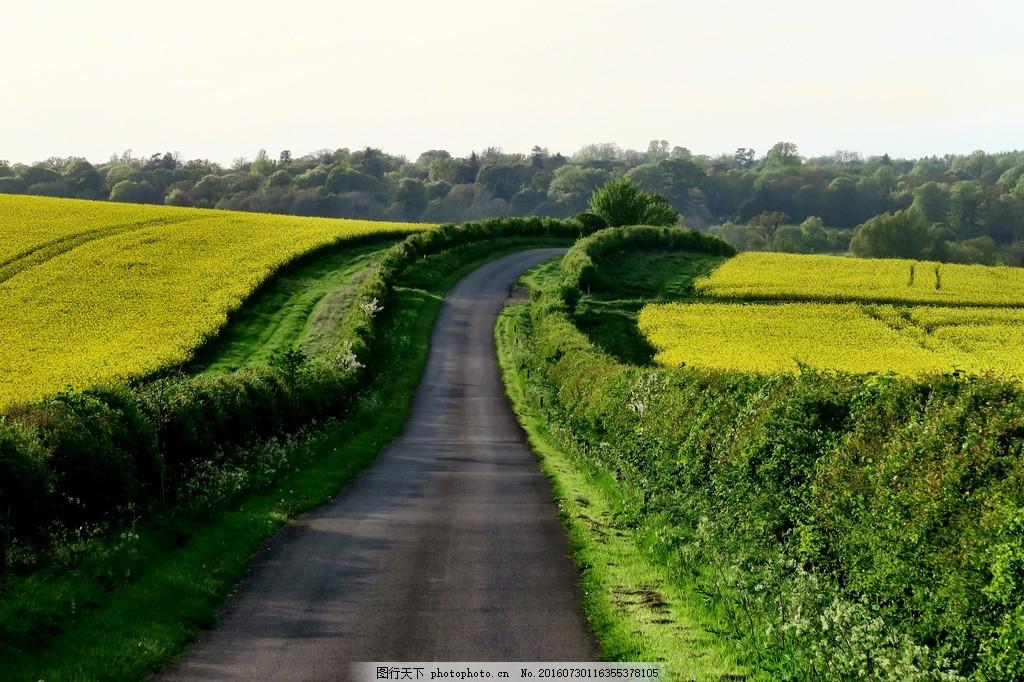 唯美乡间小路风景图片