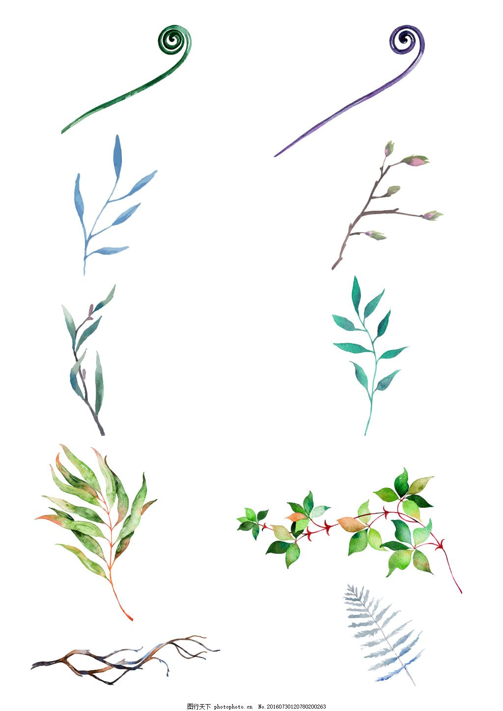 小清新水彩树枝藤蔓平面设计花纹底纹图组