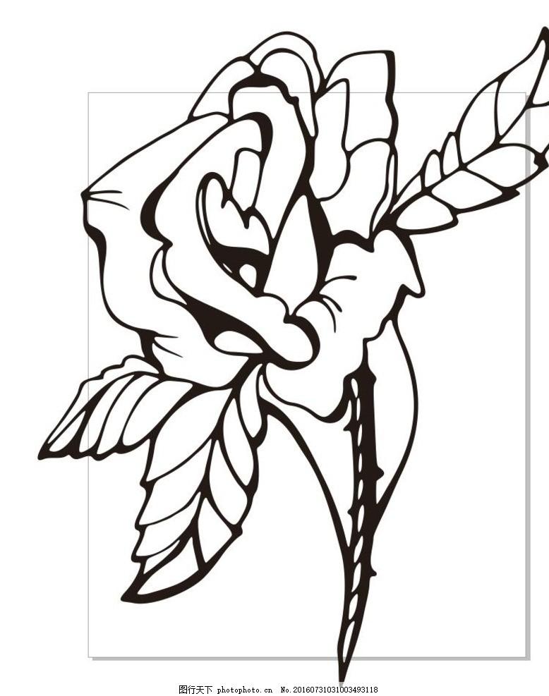 玫瑰 线描画 素描 盆栽 植物 花卉 花朵 草木 艺术插画 插画 装饰画