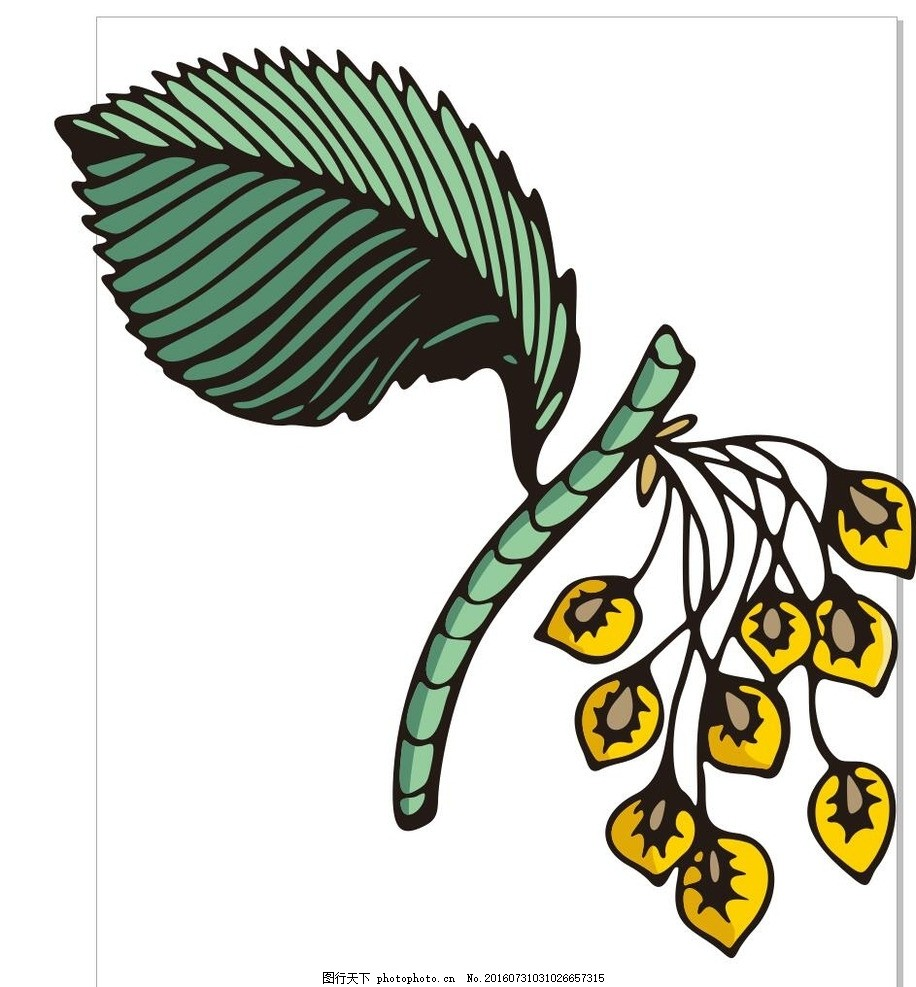 线描花 羽毛 线描画 素描 盆栽 植物 花卉 花朵 草木 艺术插画