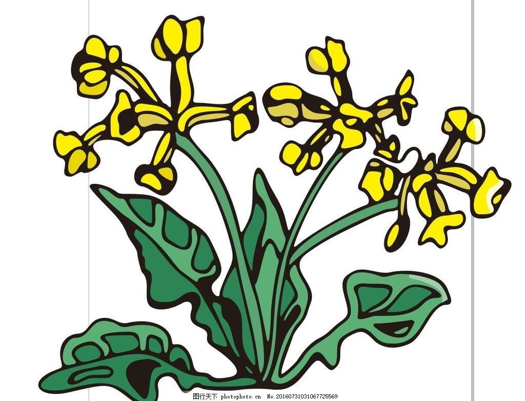 黄色的花 线描画 素描 盆栽 植物 花卉 花朵 草木 艺术插画