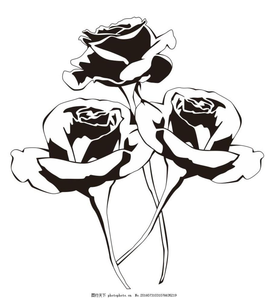玫瑰花 线描画 素描 盆栽 植物 花卉 花朵 草木 艺术插画 插画 装饰画
