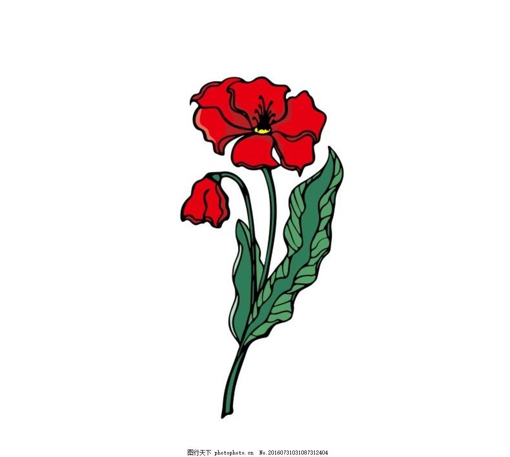 午时花 红色 线描画 素描 盆栽 植物 花卉 花朵 草木 艺术插画