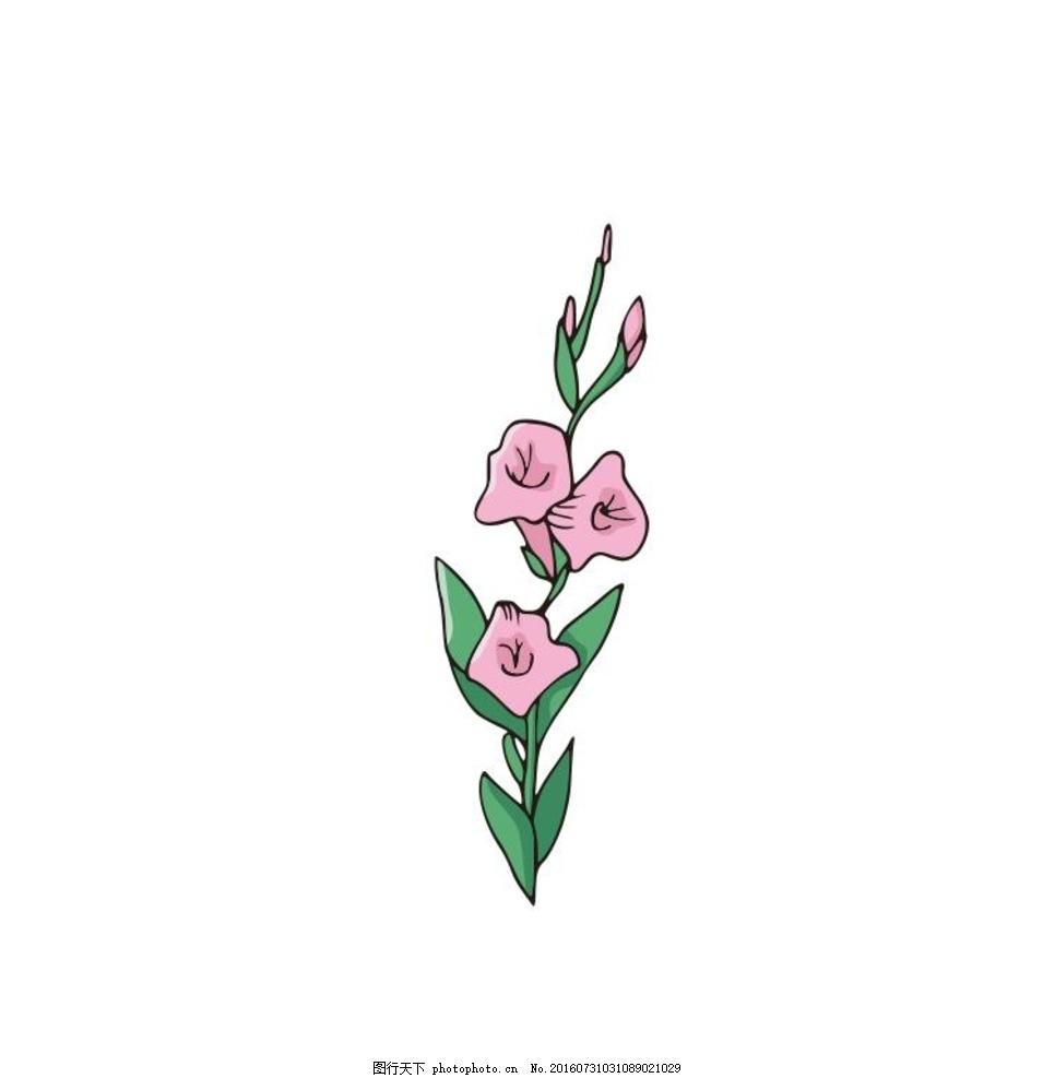 喇叭花 粉色 线描画 素描 盆栽 植物 花卉 花朵 草木 艺术插画