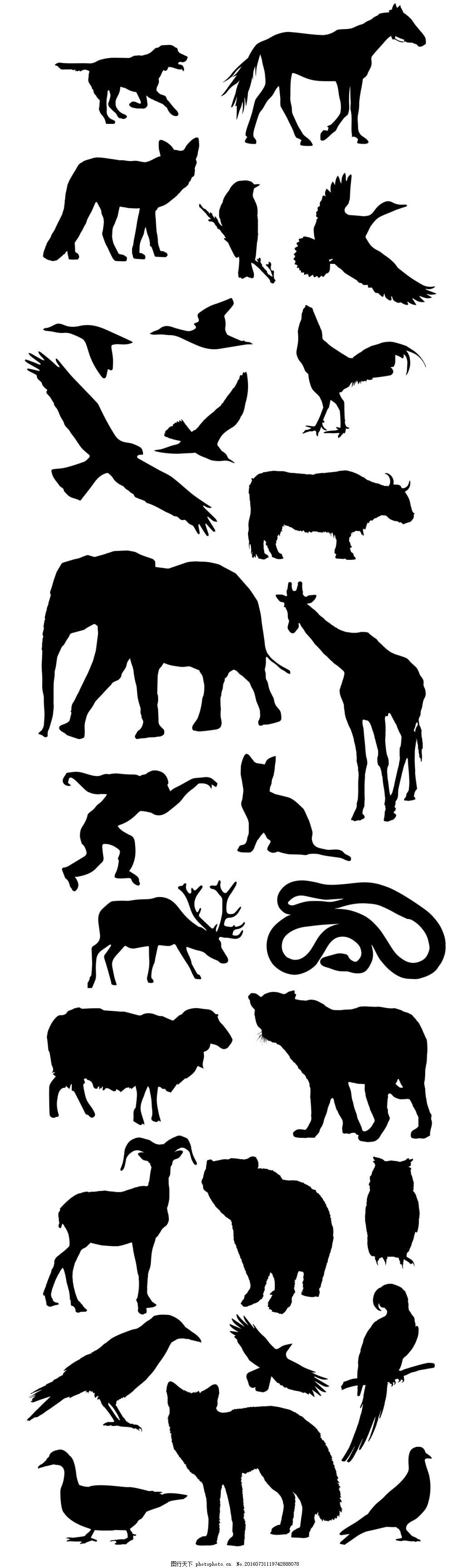 动物剪影设计 狗马狐狸鸟大象长颈鹿猴子猫羊熊蛇鸡鸭鹅剪影 动物剪切
