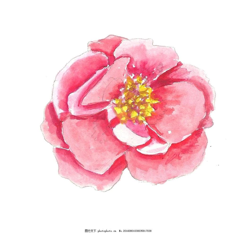 手绘花朵 花纹 边框 插画 水粉画 水彩画