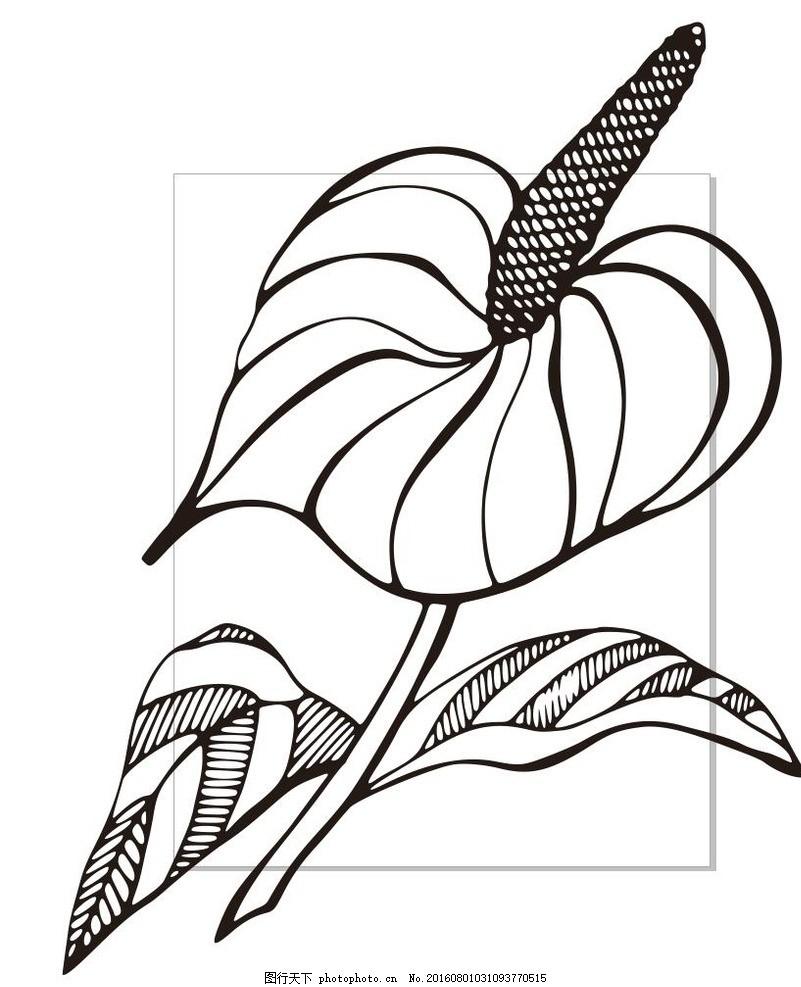 花卉 花朵 草木 艺术插画 插画 装饰画 简笔画 线条 线描 简画 黑白画