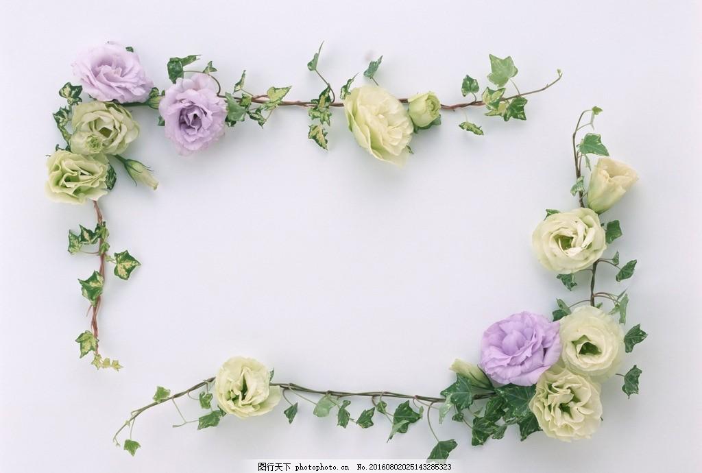 鲜花花艺 花朵 圆环 花环植物 边框 花草边框 图形 图案 图样图片
