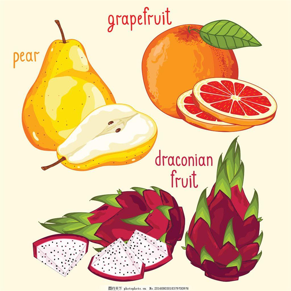梨子和石榴果 卡通 食物 美食 卡通背景 蔬菜水果 生物世界 矢量素材