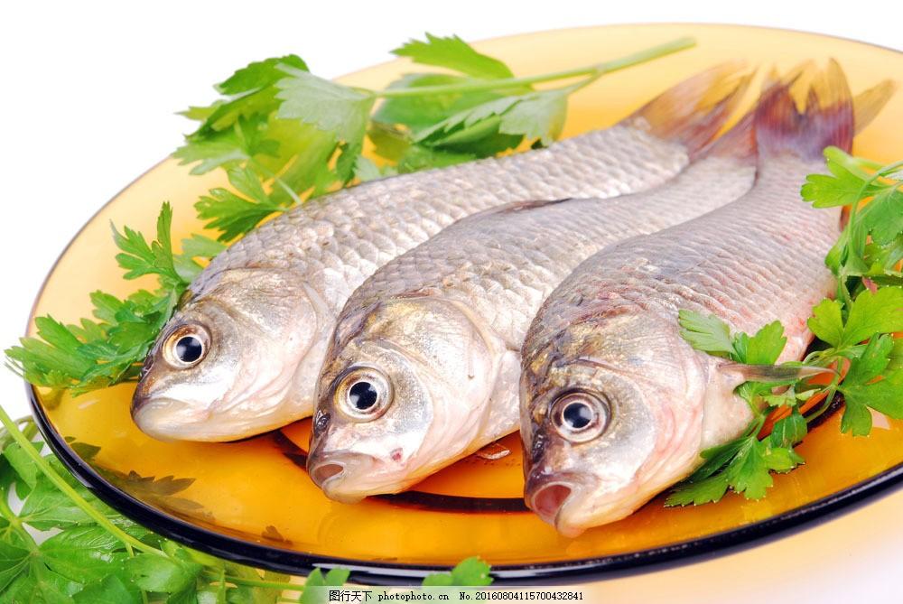 盘子里的鱼图片素材 海鲜 鱼 鱼类 鱼肉 新鲜鱼肉 肉类 美食 食物