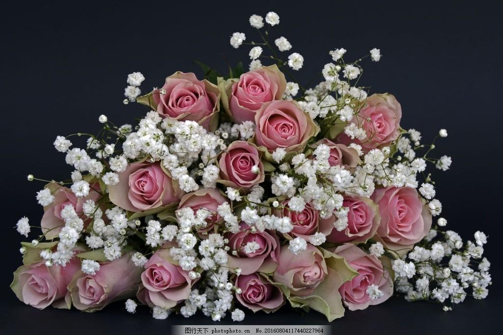 满天星鲜花