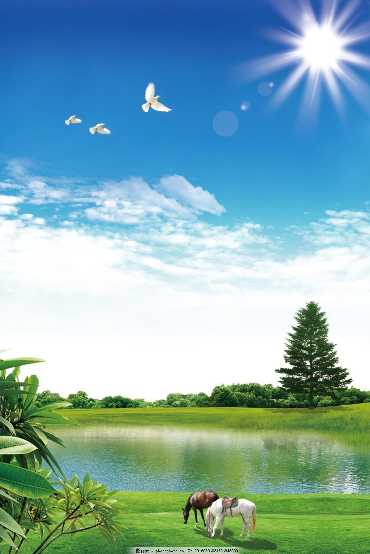 清新风景 蓝天白云 太阳 树木 马 白鸽 清新风景展板背景 自然风景