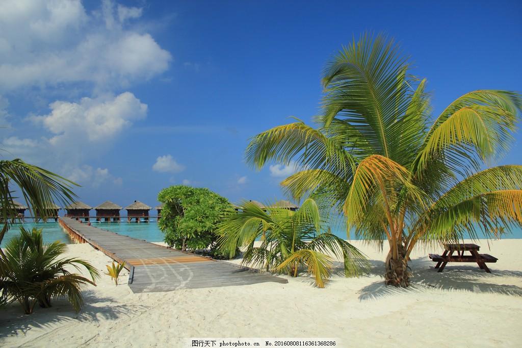 浪漫海边风景 唯美海边风景 唯美浪漫海边 度假村 椰子树