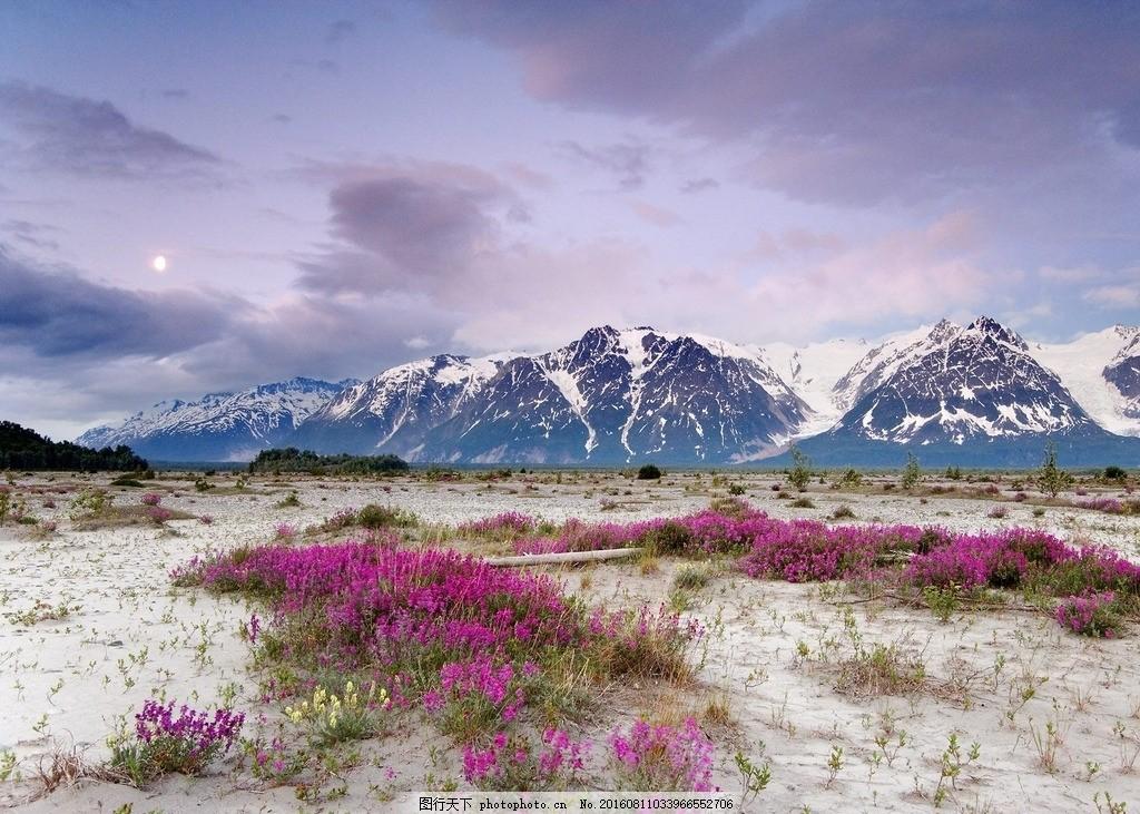 阿拉斯加州,冰川 冰山 冰河 冰冻 寒冷 冬季 冬天-图