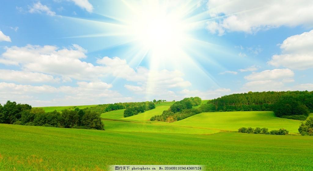 天空 蓝天背景 蓝图 绿化 风景 太阳 阳光 大树 树叶 树 蓝天白云