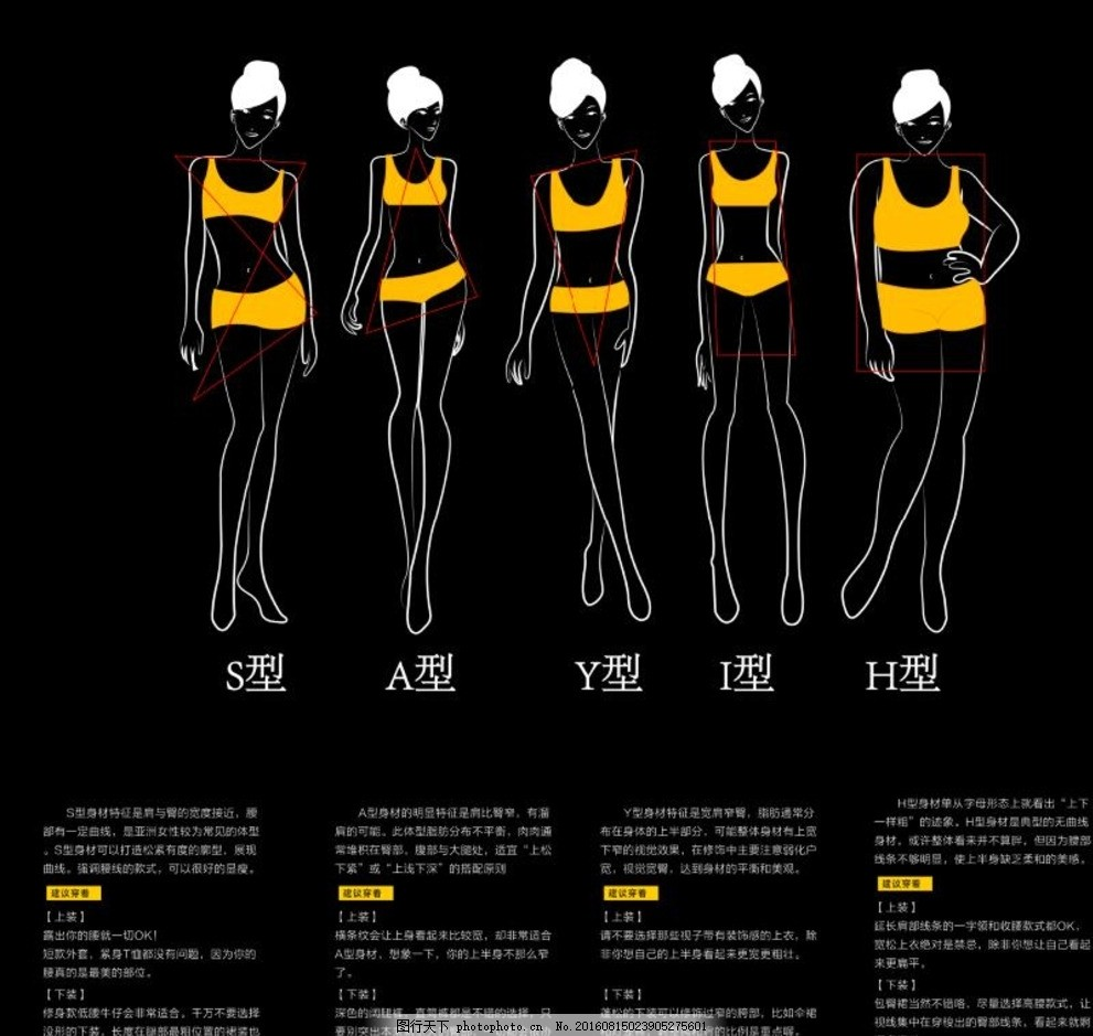 女性手绘体型型