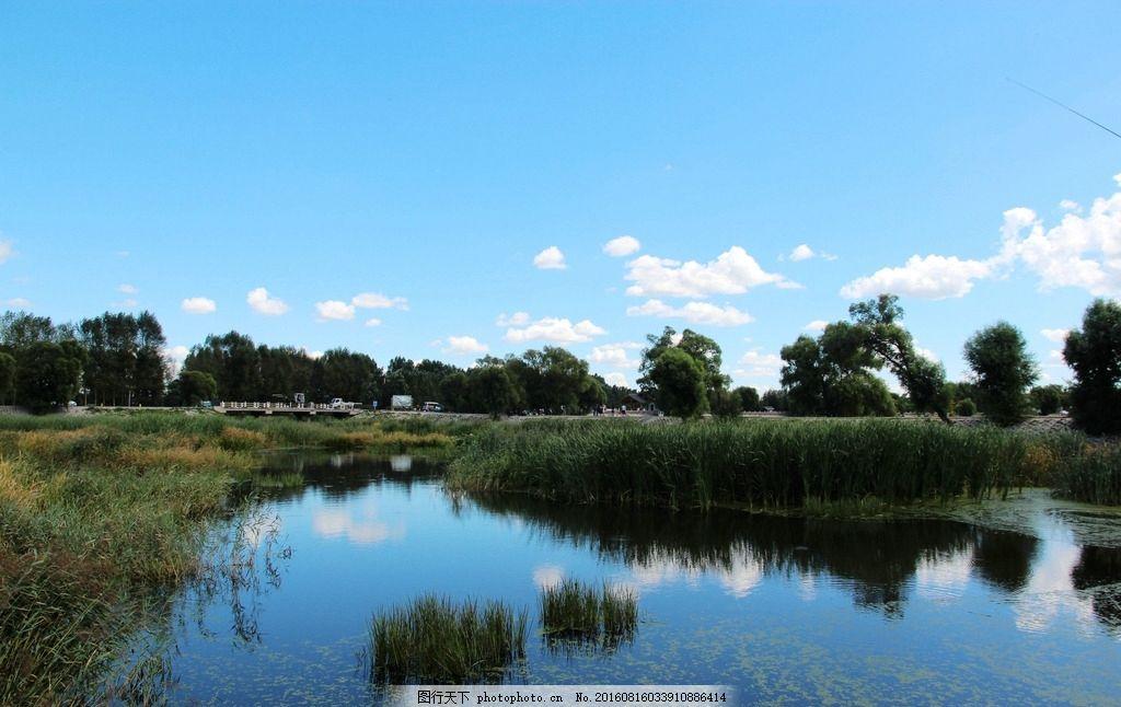 湿地 湖水 芦苇 倒影 沼泽地 蓝天 白云 哈尔滨风景 摄影 国内旅游