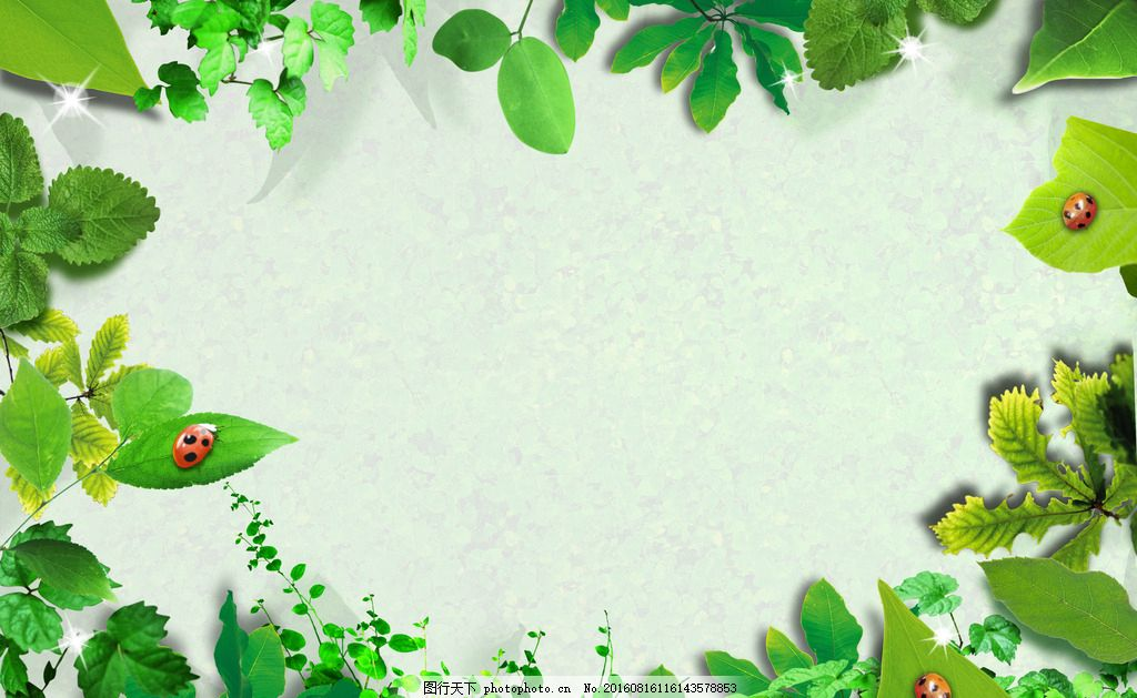 春天素材 春季素材 清新绿色相框 清新边框 绿色 清新 树叶 七星瓢虫