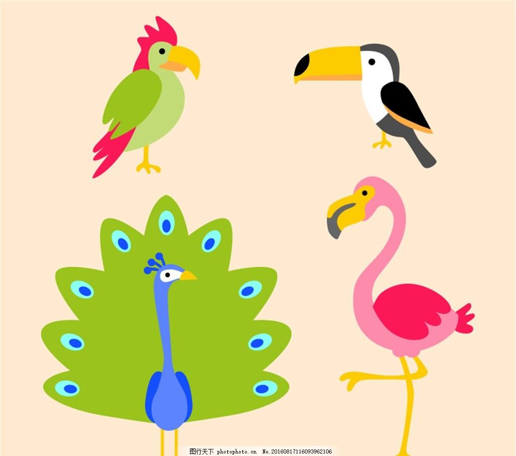 彩色卡通鸟设计矢量素材 啄木鸟 大嘴鸟 孔雀 火烈鸟 鸟 动物 矢量图