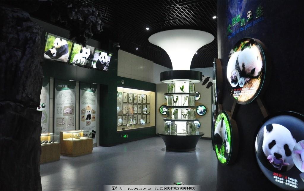 雅安生态博物馆植物展厅 熊猫 动物 展板 标本 灯箱 摄影 建筑园林