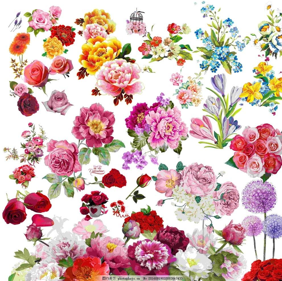 花,花朵 手绘花 牡丹花 玫瑰花 花背景 节日素材-图行