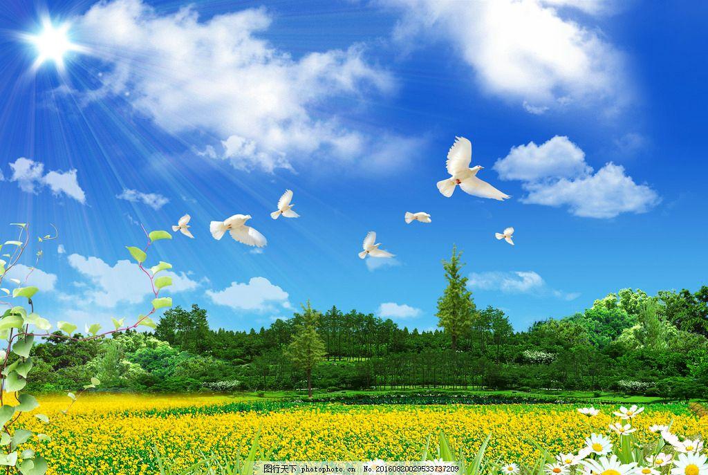 田园风光背景 鲜花 蓝天 白鸽 森林 风景