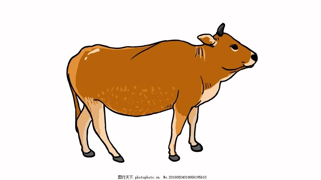 黄牛 肉牛 手绘 彩色 动漫动画
