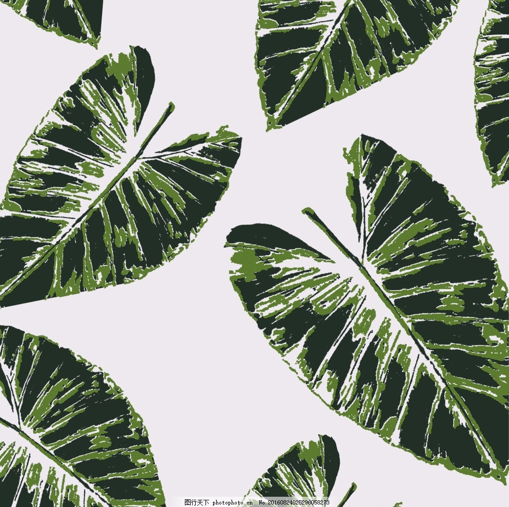 热带植物 自然 热带 雨林 植物 树叶 设计 生物世界 树木树叶 300dpi