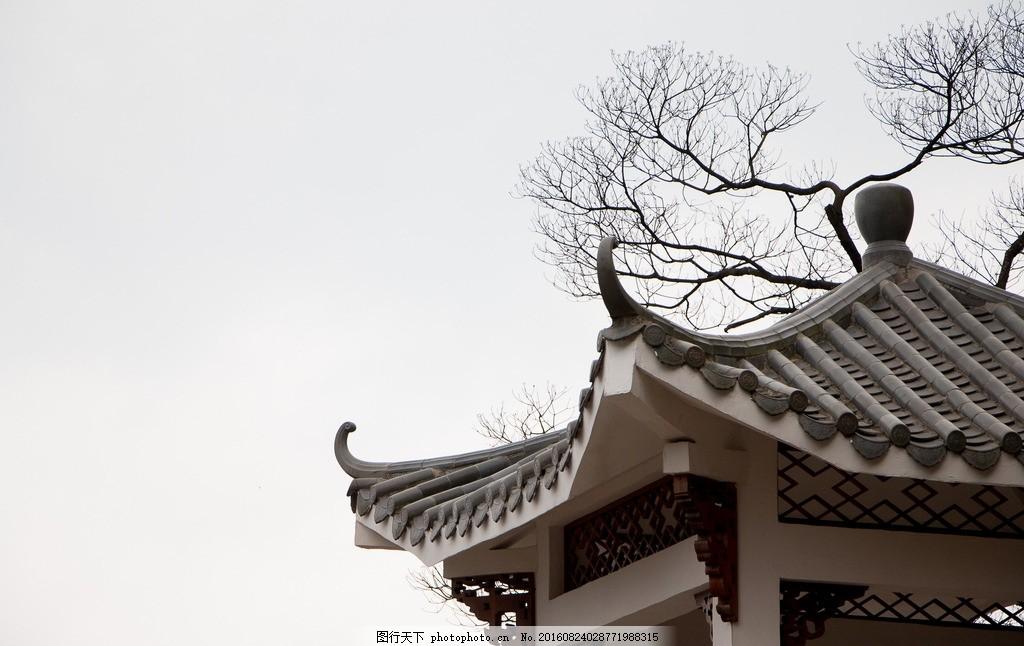 古风 中国风 树枝 亭子 背景 阴天 摄影 建筑园林 园林建筑