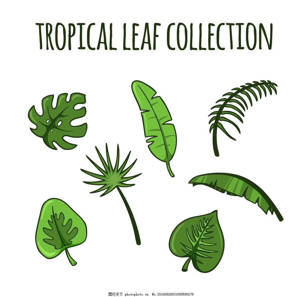 手绘热带绿叶 树 手 自然 绿色 叶子 手绘 叶 棕榈 热带 绘画 植物