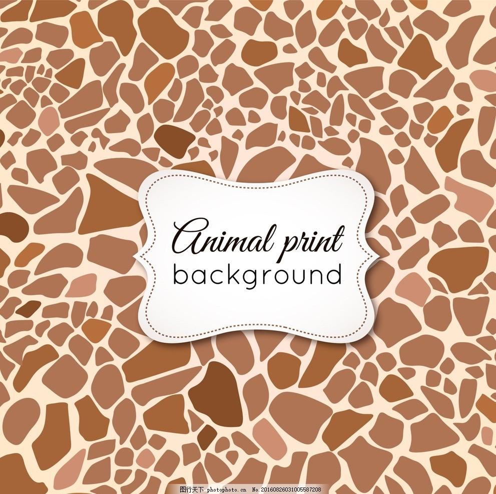 长颈鹿皮肤 背景 抽象 自然 动物 形状 热带 长颈鹿 性质 皮肤 野生