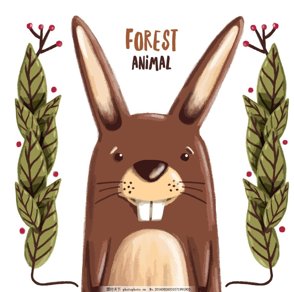 手绘树叶装饰 水彩 自然 动物 森林 可爱的 兔 兔子 故事 野生