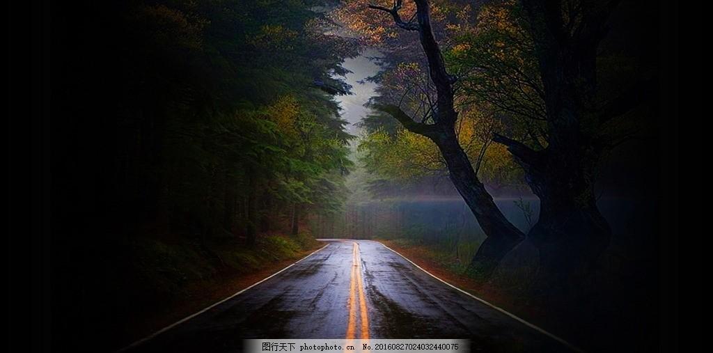 黑暗道路 黑暗系 昏暗 黑色 公路 马路 森林 树林 林木 树木