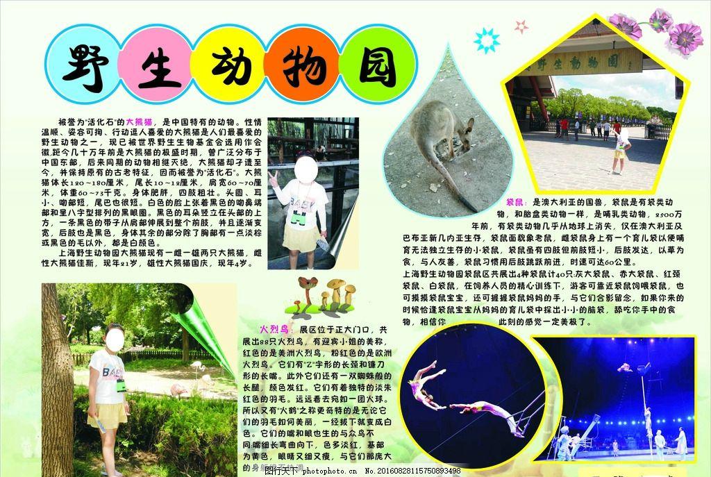 野生动物园小报 旅游小报 旅游日记 学校小报 手抄报 暑假日记