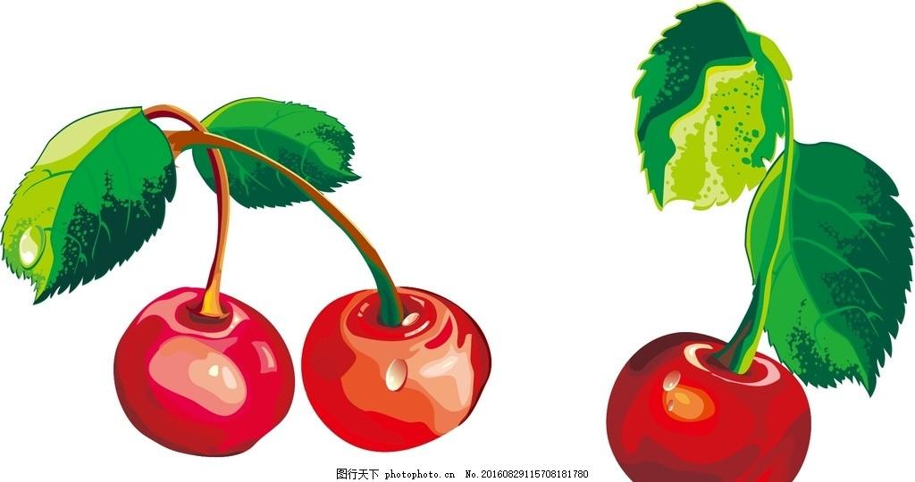 樱桃 矢量素材 手绘 水彩 矢量水果素材 新鲜水果 写实水果 红色樱桃