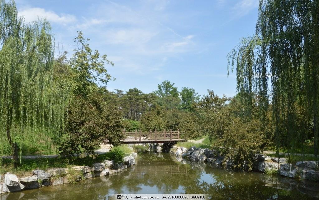 湖水风景 圆明园风景 圆明园美景 园林美景 蓝天白云 小路 林荫道
